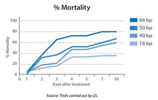 mortality graph